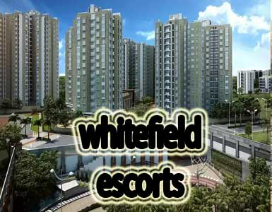 Whitefield Escorts in Bangalore